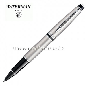 Ручка Waterman Expert Essential Stainless Steel CT S0952080